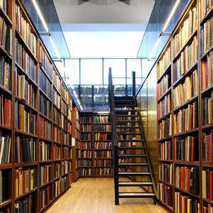 Библиотеки Дудоровского